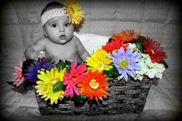A- B&W flowers